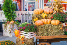 Pumpkins From The Farm On A Ca...
