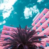 Pink minimal fashion. Palm Tropics location. Art design - 173266342