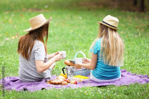 Keuken foto achterwand Picknick Two female friends on picnic in park