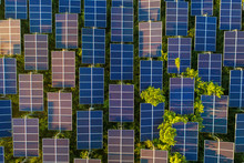 Top View Of Solar Panels (sola...