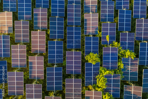 Poster Bleu nuit Top view of solar panels (solar cell) in solar farm with green tree and sun lighting reflect .Photovoltaic plant field.