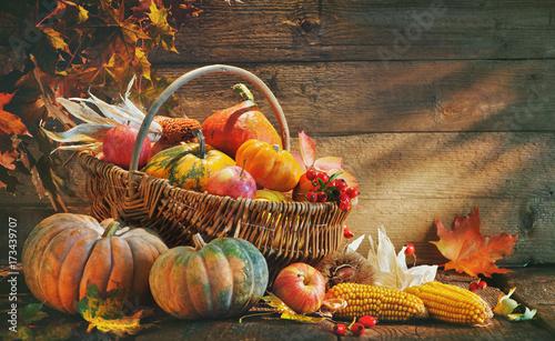 Plakat Święto Dziękczynienia tło z dyni