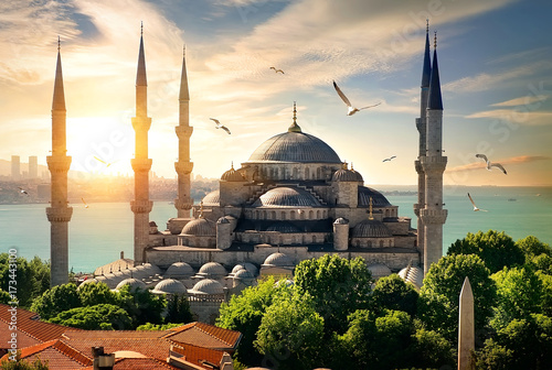 Fotografie, Obraz Seagulls over Blue Mosque