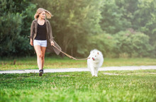 Girl Walking Dog At The Park, ...
