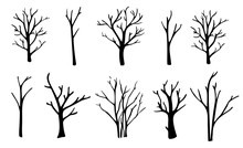 Naked Trees Silhouettes Set. H...