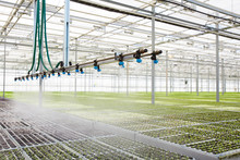 Interior Of Modern Hothouse Wi...