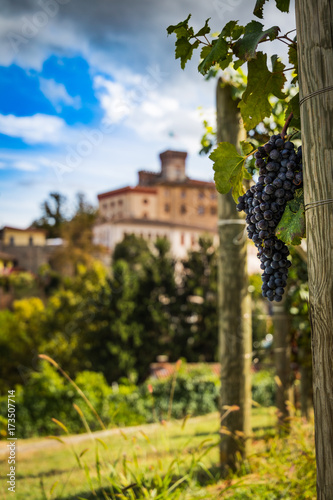 Barolo town view from Barolo wine vineyards Canvas Print