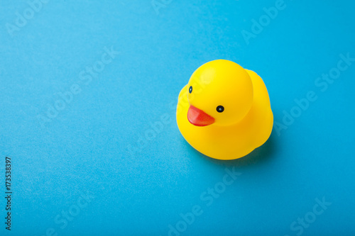 Yellow rubber duck toy on blue background.