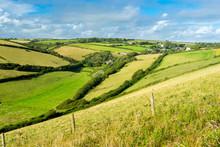Devon Countryside Views