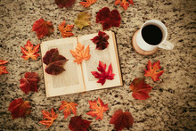 Looking Straight Down Perspective Of A Book With Fall Leaves And A Cup Of Coffee Or Tea On A Granite Countertop