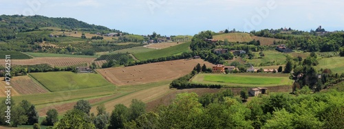 Fotografía  hills of the monferrato
