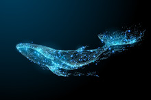 Blue Whale Composed Of Polygon. Marine Animal Digital Concept. Low Poly Vector Illustration Of A Starry Sky Or Comos. The Whale Consists Of Lines, Dots And Shapes. Wireframe Light Connection Structure
