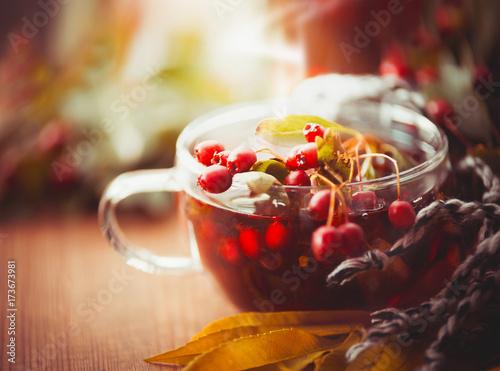 przezroczysta-filizanka-jesiennej-herbaty-z-czerwonymi-jagodami-goi