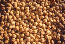 Walnuts On The Sun