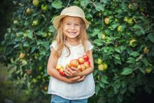 Happy Little Girl Holding Appl...