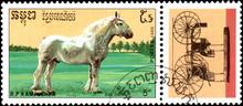 R.P. KAMPUCHEA - CIRCA 1989: A Stamp Printed In R.P. Kampuchea Shows A Bolounais Horse, Series Breeds Of Horses