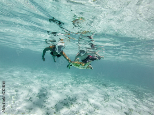nager avec les tortues dans les Antilles