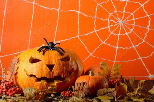 Zdjęcie XXL Straszna Halloweenowa bania i czarny pająk wśród żółtych liści na tle sieć w pomarańczowej ścianie