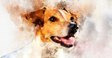 Digital Watercolor Painting Of Jack Russell Terrier Dog