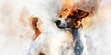 Jack Russell Terrier Dog. Digital Watercolor Painting