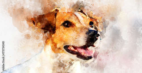 Fotografie, Obraz  Digital watercolor painting of Jack Russell Terrier dog