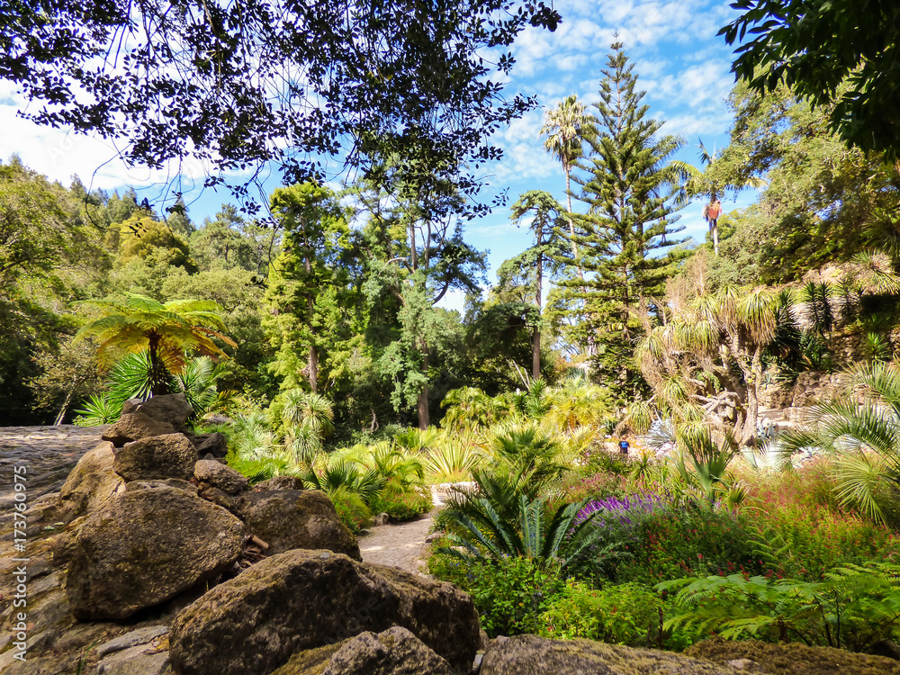 Fototapeta Majestic garden at Monserrate Park and Palace in Sintra, Portugal