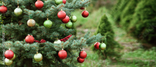 Fotomural Decorated Christmas tree in pine park