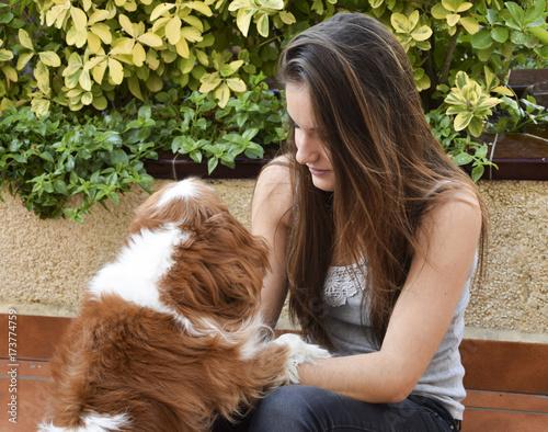 Tela  Juegos con la mascota