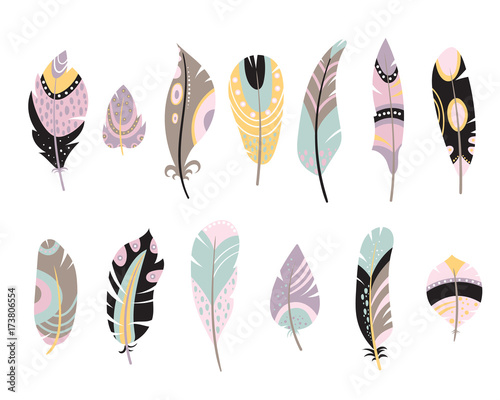 Fototapeta  Vector set of vintage feathers