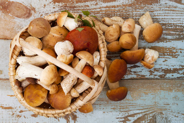Variety of uncooked wild forest mushrooms in a basket on a wooden old board. Top view.