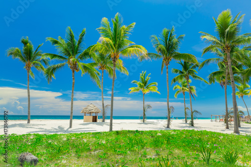 natural  fabulous landscape view, beautiful inviting tropical white sand beach a Canvas Print