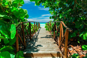 Fototapetabeautiful mesmerizing magic view of old wooden bridge going through tropical garden to the beach and tranquil ocean on sunny summer day