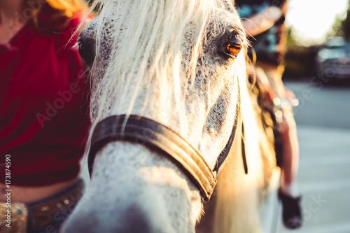 Photo  Horsey Ride