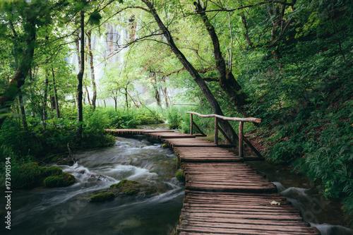 La pose en embrasure Route dans la forêt Wooden path across small creek in summer green forest