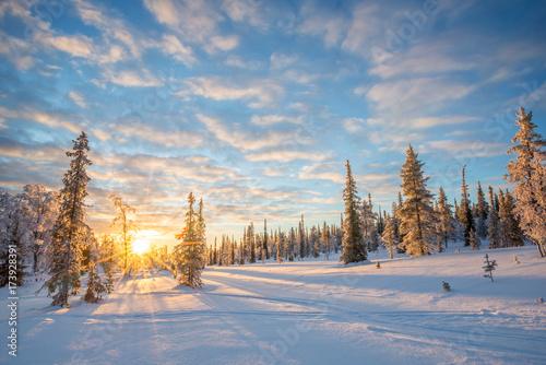 sniezny-krajobraz-przy-zmierzchem-zamarznieci-drzewa-wewnatrz