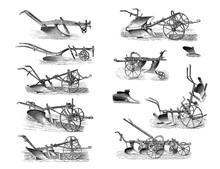 Illustrations Of Agricultural ...