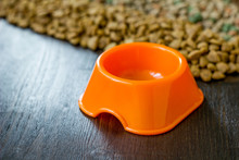 Small Orange Bowl For Pet Food And Dry Food As Background.