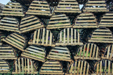 Lobster Traps Piled In Canada