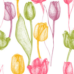 Fototapeta Seamless vector tulip pattern. Spring vintage background with hand drawn tulips and butterflies