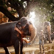 Kandy, Esala Perahera, Sri Lanka