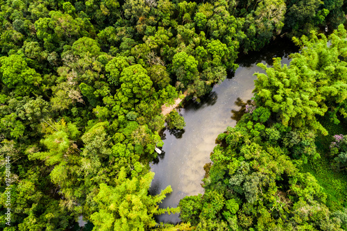 Spoed Fotobehang Centraal-Amerika Landen Aerial View of Amazon Rainforest, South America