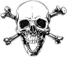 Graphic Human Skull With Crossed Bones