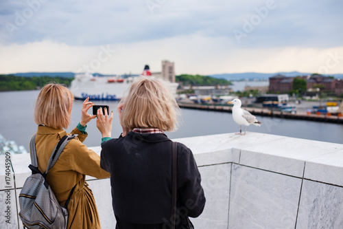 Photo  Two young stylish girls take pictures of a bird seagull