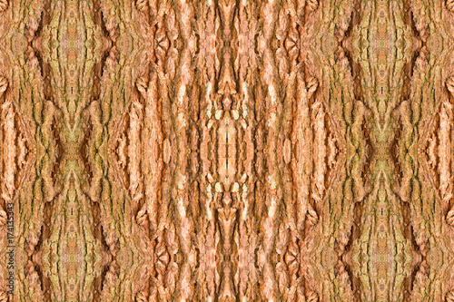 Photo wood shell tamarind texture design seamless  pattern