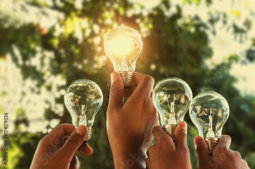 Photo  solar energy concept hand group holding light bulb in nature