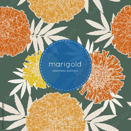 Fotografía  orange marigolds , hand draw sketch vector.