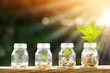 canvas print picture - Coin in the bottle and plant growing with savings money put on the wood in the morning sunlight, Business investment and saving growth concept.