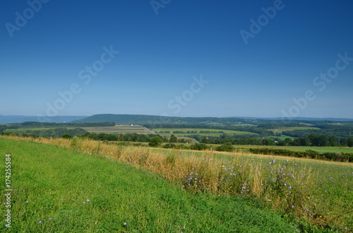 Fotografie, Obraz Summer farm fields on the hillside of upstate New York