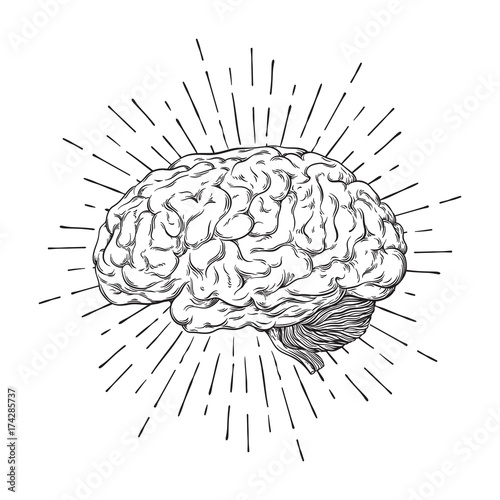 Hand drawn human brain with sunburst anatomically correct art. Flash tattoo or print design vector illustration