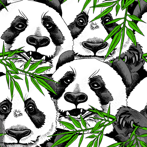 plakat Seamless pattern with image of a Panda eating branch of bamboo. Vector illustration.